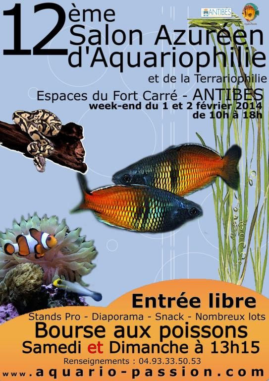 affiche définitive (light).jpg